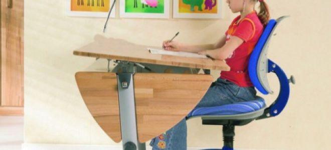По каким параметрам нужно выбирать стул для ребенка-школьника